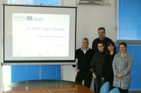 4th ICAP Project meeting